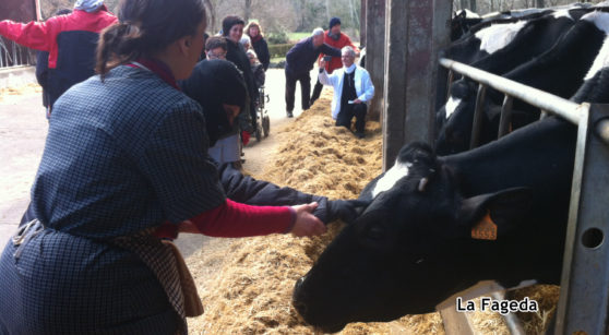 La Fageda: dairy products with a heart