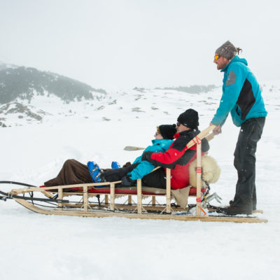 White safaris on sleds (Val d'Aran, Catalonia).