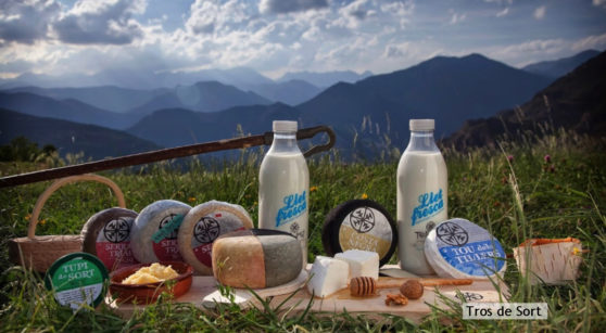 Learn about the cheeses of the Pyrenees