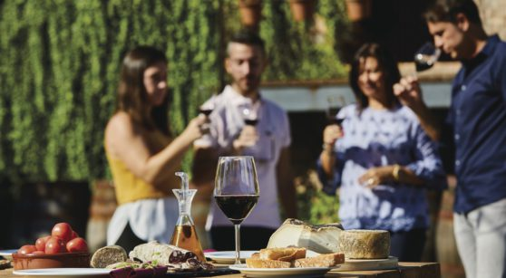 10 reasons to discover wine tourism in Catalonia